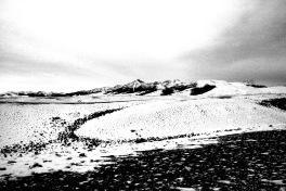 Winter Lemhis