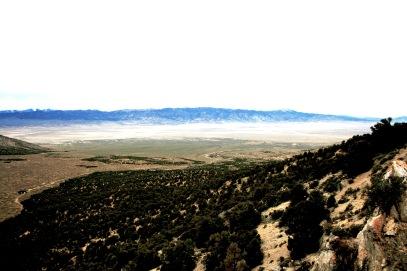AV, Aerial View, WF